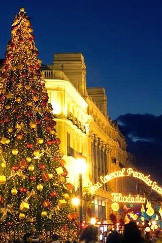 Christmas Tree at the Puerta Del Sol, Madrid