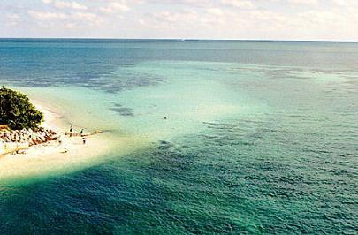 Florida Keys Please...