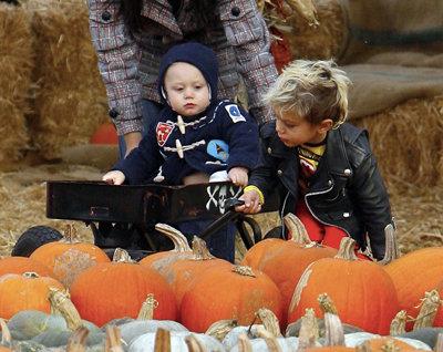Kingston and Zuma Making Halloween a Million Times Cuter
