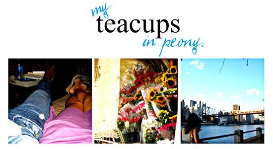 My Teacups in Peony