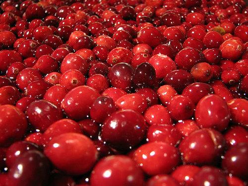 Cranberry Almond Biscotti