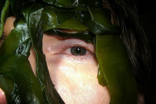 Seaweed Wraps