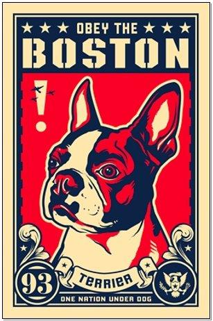 Obey the Boston