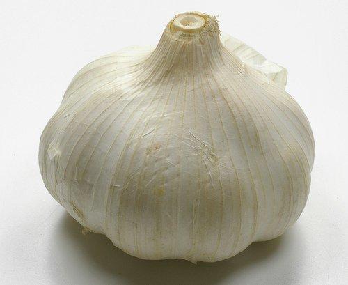 Garlic and Rock Salt