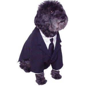 Dog Business Suit Shirt Tie