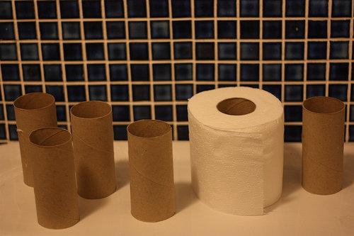The inside of Toilet Rolls