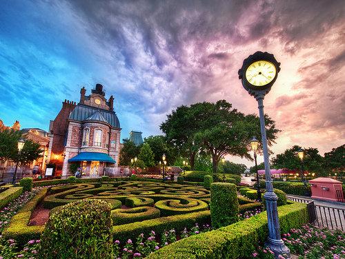 Disney World or Land