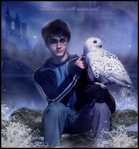 He's a Harry Potter Fan