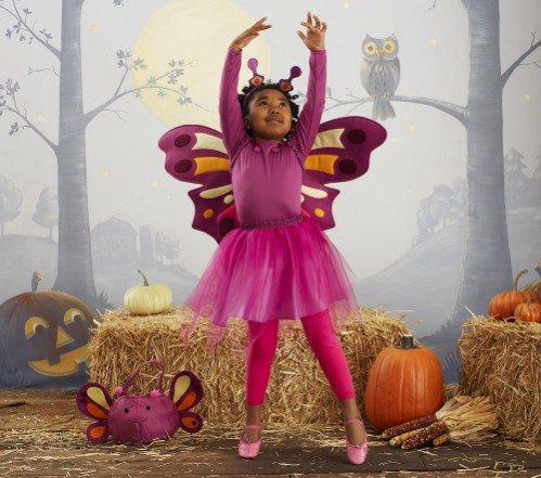 Pottery Barn Kids Butterfly Tutu Costume