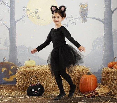 Pottery Barn Kids Cat Tutu Costume
