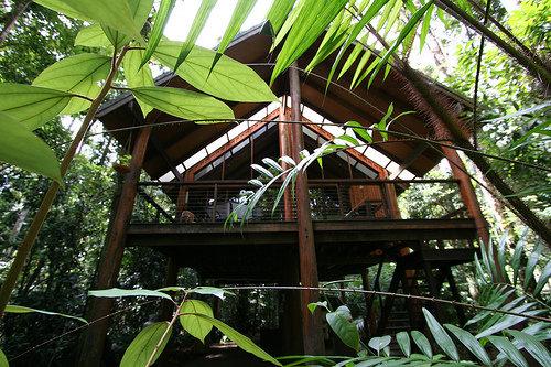 Fur N' Feathers Rainforest Tree Houses in Australia