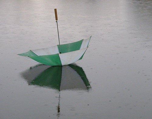 Umbrella Case