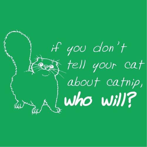 Dangers of Catnip