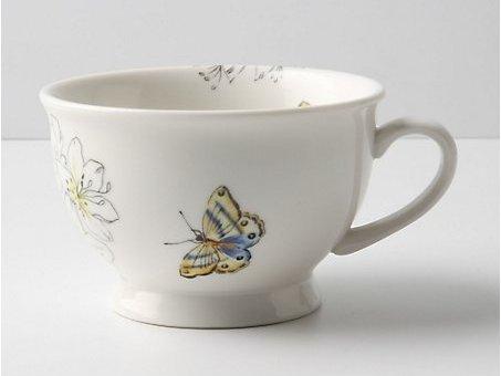 Butterfly Study Mug
