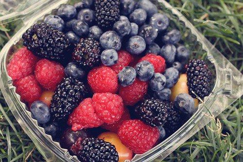 Go Berry Picking
