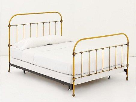 Marigold Bed
