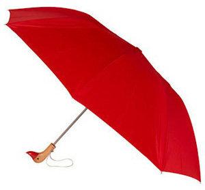Modcloth Duck, Duck, Umbrella
