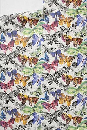 Color Flight Wallpaper