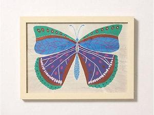 Butterfly Series Framed Art