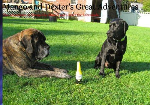 Mango and Dexter's Great Adventures