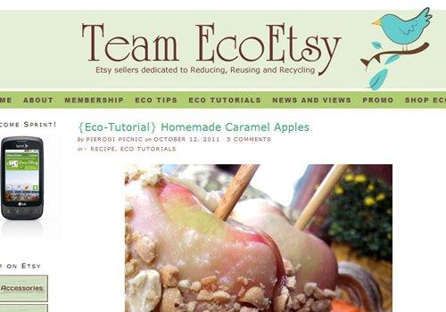 Team EcoEtsy