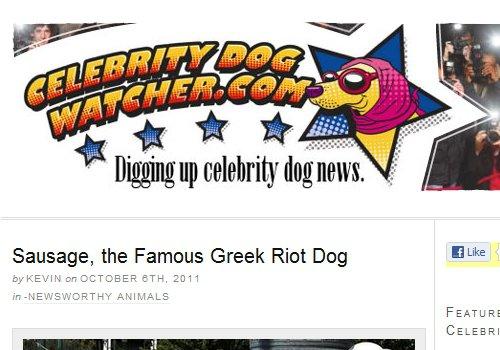 Celebrity Dog Watcher
