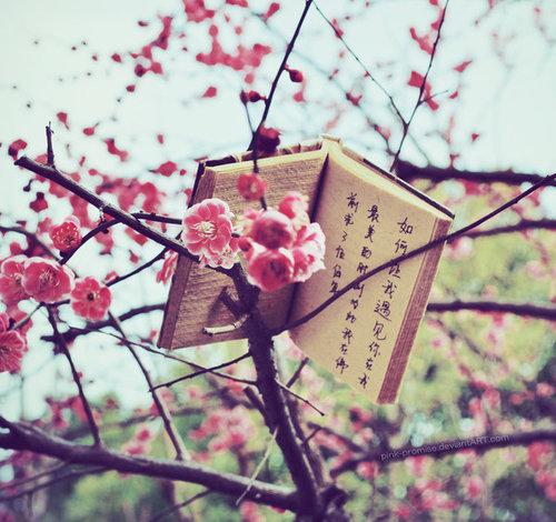 Surviving in Japan