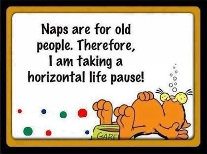 Occasional Naps