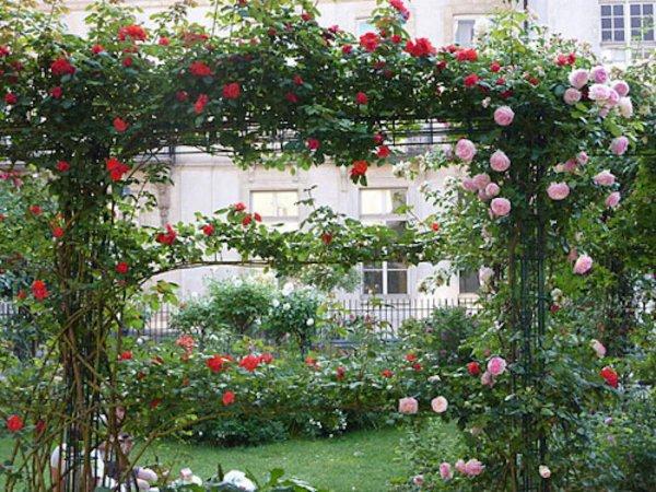 Jardin Saint-Gilles-Grand Veneur