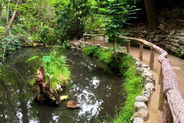 Ferndell Nature Center