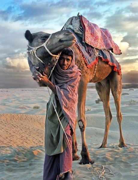 Sand Dunes, the Desert of Rajasthan