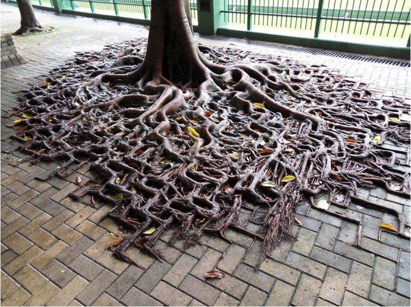 iron, art, track, outdoor structure, flooring,