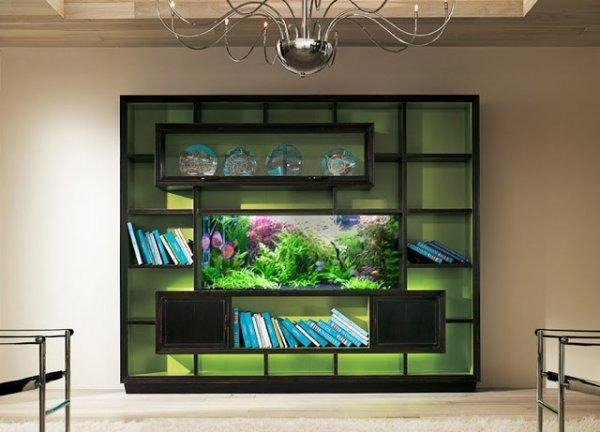 Shelf Unit Aquarium
