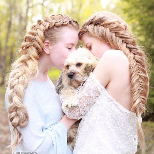 person, woman, pet, hug, AURORA,