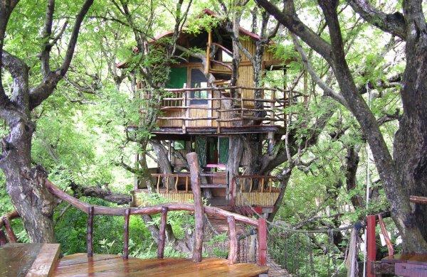 Sanya Nanshan Treehouse, Jiangsu, China