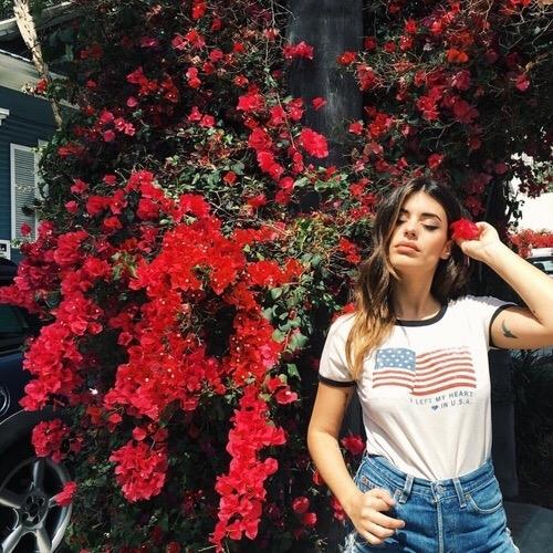 red,flower,plant,tree,season,