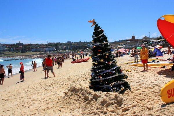 Have a Beach Picnic in Sydney, Australia