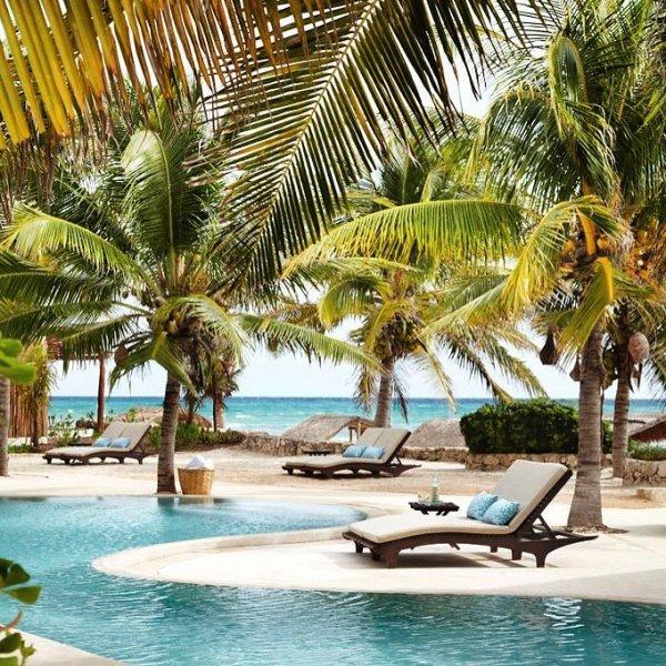 resort, swimming pool, leisure, caribbean, tropics,