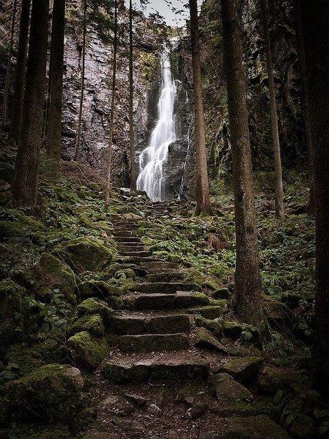 Black Forest (Schwarzwald), Germany