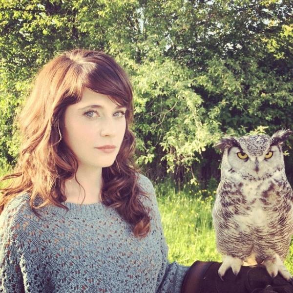 owl,bird,eka,