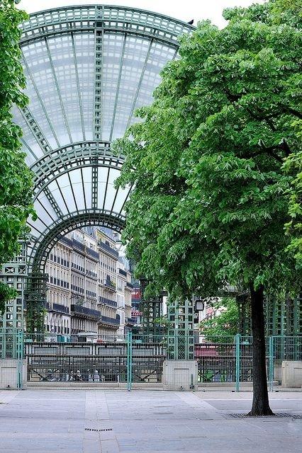 tree,urban area,city,neighbourhood,architecture,