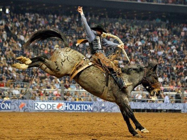 Go Rodeo!