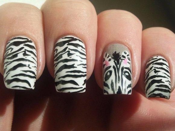 Fantastic Zebra