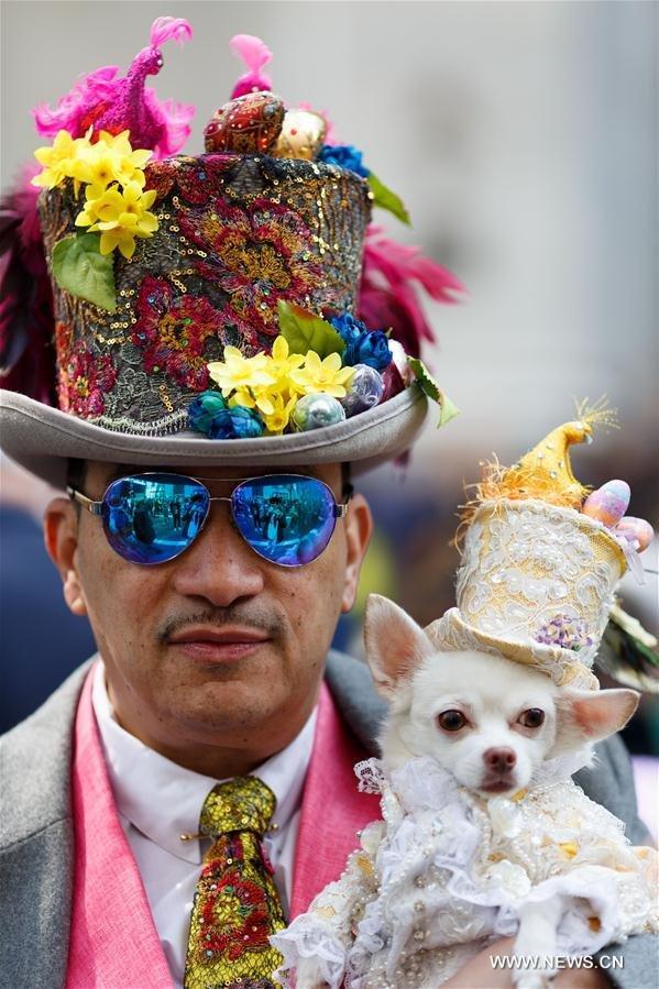 Headgear, Hat, Carnival, Event, Flower,