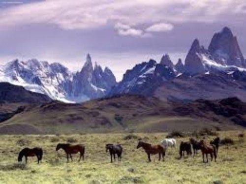 Argentina – 68.3%