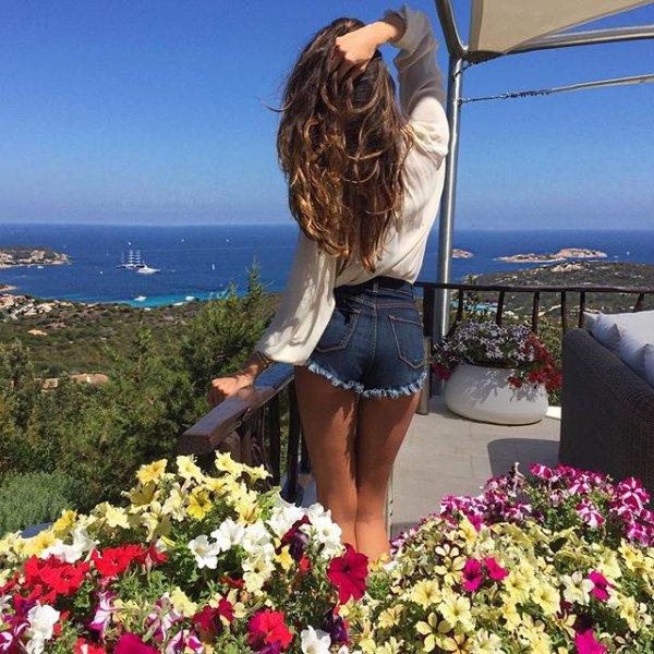 flower, plant, flowering plant, beauty, sea,