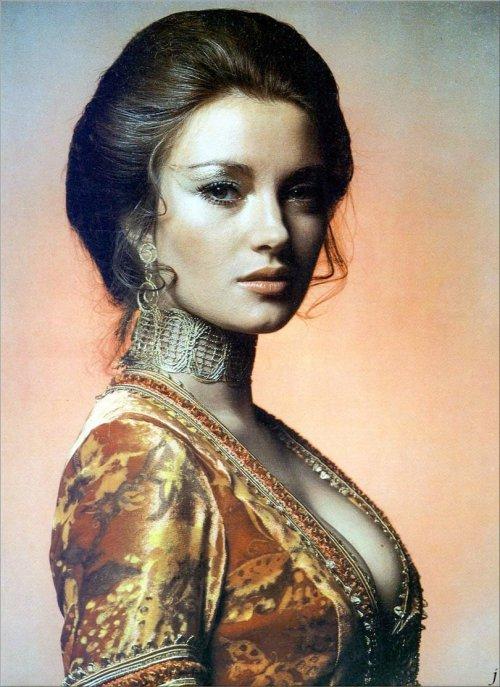woman, lady, beauty, hairstyle, portrait,
