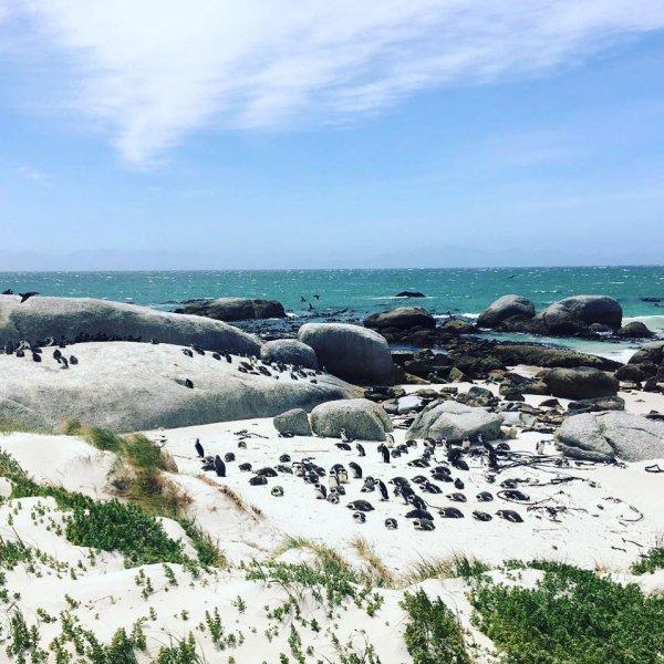 Coast, Sea, Ocean, Shore, Coastal and oceanic landforms,