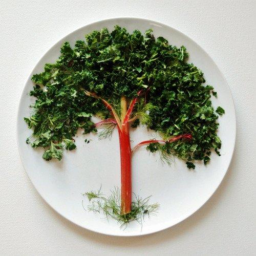 food, vegetable, produce, leaf vegetable, plant,