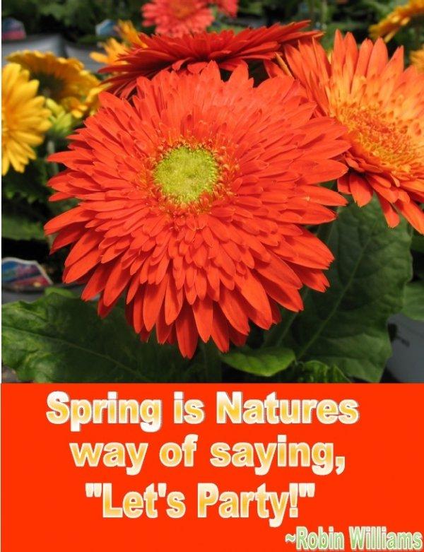 On Spring